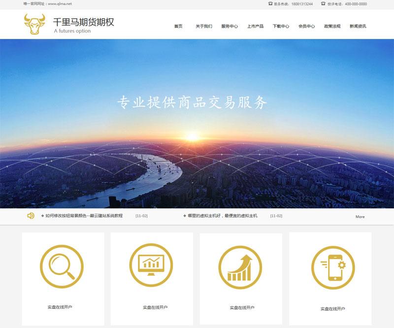 金融投資期貨典檔公司網站模板風格